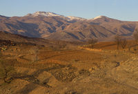 Ploughed fields and the Siroua Massif, Anti Altas Range, Morocco, North Africa, Africa