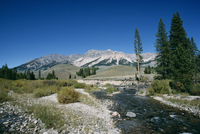 Wood River and Sawtooths, Sawtooth National Recreation Area, Idaho, United States of America (U.S.A.), North America