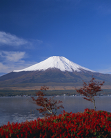 Mount Fuji, Honshu, Japan, Asia