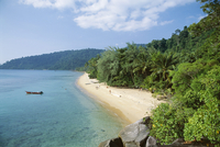 View along the coast, Nazri's Beach and rainforest, Air Batang Bay, Pulau Tioman, Pahang Marine Park, Pahang, Malaysia, Asia