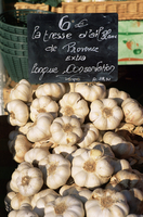 Garlic for sale on the market in Cours Saleya, Nice, Alpes Maritimes, Cote d'Azur, Provence, France, Europe
