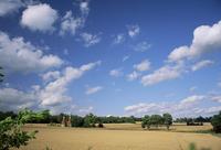 Rural landscape with oasthouses, Ightham near Sevenoaks, Kent, England, UK