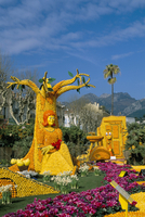 Fruit display in Bioves Gardens, Lemon Festival, Menton, Alpes-Maritimes, Cote d'Azur, Provence, France, Europe