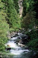 The Diosaz gorge, Servoz near Chamonix, Haute-Savoie, Rhone Alps, France