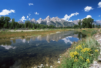 View from Schwabacher's Landing across the Snake River to the Teton Range, Grand Teton National Park, Wyoming, United States of