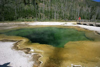 Emerald Pool, Black Sand Basin, Yellowstone National Park, UNESCO World Heritage Site, Wyoming, United States of America, North