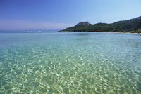 Still waters off the Plage Notre Dame, Ile de Porquerolles, near Hyeres, Var, Provence-Alpes-Cote-d'Azur, France, Europe