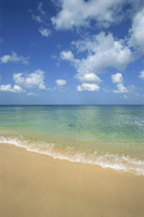 Calm water on beach at Paynes Bay, Barbados, West Indies, Caribbean, Central America