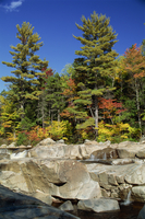Large boulders in the Swift River, and trees in fall colours, on the Kancamagus Highway, New Hampshire, New England, United Stat