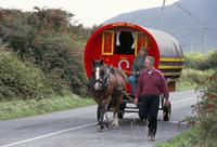 Horse-drawn gypsy caravan, Dingle Peninsula, County Kerry, Munster, Eire (Ireland), Europe