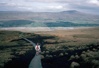 Land boardwalk laid to prevent path erosion, Yorkshire Dales, England, United Kingdom, Europe