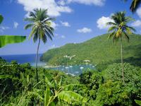 Marigott Bay, St Lucia