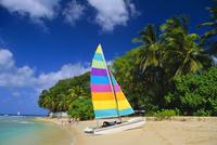 St. James Beach, Barbados, Caribbean, West Indies 20025349094| 写真素材・ストックフォト・画像・イラスト素材|アマナイメージズ