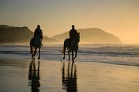 Horse riding on the beach at sunrise, Gisborne, East Coast, North Island, New Zealand, Pacific