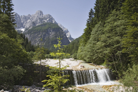 Waterfall over weir on River Velika Pisnca with crystal clear water, Prisank mountain, Triglav National Park, Julian Alps, Kranj