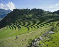 Inca terrace still in use, Pisac, near Cuzco, Peru, South America 20025349351| 写真素材・ストックフォト・画像・イラスト素材|アマナイメージズ