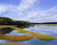 Still water reflecting the sky near Kennebunkport, Maine, New England, United States of America