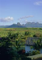 Northwest area of the island, Mauritius, Indian Ocean, Africa