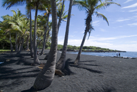 Punaluu Black Sand Beach, Island of Hawaii (Big Island), Hawaii, United States of America, Pacific, North America