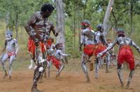 Aboriginal dance, Australia 20025349751| 写真素材・ストックフォト・画像・イラスト素材|アマナイメージズ
