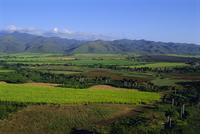 Vallee de San Luis, Trinidad, Cuba, West Indies, Central America
