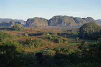 Landscape view of fields and trees in valley, with hills beyond, Vinales Valley, UNESCO World Heritage Site, Cuba, West Indies,