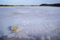 Salt lake at Ses Salines, Formentera, Balearic Islands, Spain, Mediterranean, Europe