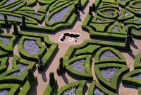 Formal gardens, Chateau of Villandry, Indre et Loire, Loire Valley, France, Europe 20025350027  写真素材・ストックフォト・画像・イラスト素材 アマナイメージズ
