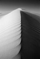 Dunescape, Oman 20025350145| 写真素材・ストックフォト・画像・イラスト素材|アマナイメージズ