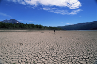 Backpacker walking across dried up lake towards Llaima volcano, Conguillio National Park, Chile, South America 20025350787| 写真素材・ストックフォト・画像・イラスト素材|アマナイメージズ