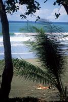Beach tan on the Pacific Ocean, Corcovado National Park, Peninsula de Osa, Costa Rica, Central America