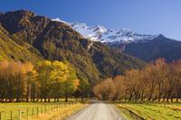 Gravel road, Matukituki Valley, Central Otago, South Island, New Zealand, Pacific 20025351017| 写真素材・ストックフォト・画像・イラスト素材|アマナイメージズ