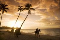 Las Terrenas at sunset, Samana Peninsula, Dominican Republic, West Indies, Caribbean, Central America 20025351602| 写真素材・ストックフォト・画像・イラスト素材|アマナイメージズ