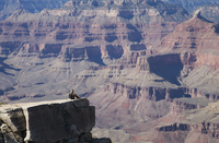 Woman looking over the Grand Canyon, Grand Canyon National Park, UNESCO World Heritage Site, Arizona, United States of America,