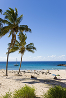 Anakena beach, the Island's white sand beach fringed by palm trees, Rapa Nui (Easter Island), Chile, South America 20025351904| 写真素材・ストックフォト・画像・イラスト素材|アマナイメージズ