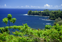 Onomea Bay by the Pepeekeo Four-Mile scenic drive on the Hamakua coast in the northeast of Hawaii, The Big Island, United States