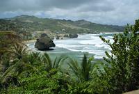St. Joseph Parish Stacks on Bathsheba Beach, Barbados, Caribbean, West Indies, Central America