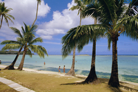 Beach at the Dai Ichi hotel, Guam, Marianas, Pacific islands, Pacific 20025352805| 写真素材・ストックフォト・画像・イラスト素材|アマナイメージズ