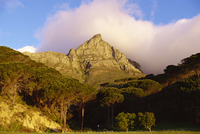 Table Mountain, Cape Town, Cape, South Africa, Africa