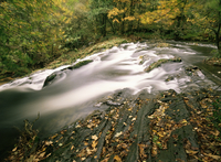 Force Falls in autumn, Ruscand Valley, Lake District National Park, Cumbria, England, United Kingdom, Europe 20025353813| 写真素材・ストックフォト・画像・イラスト素材|アマナイメージズ