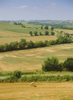 Gascony view from Lavardens villiage, Midi-Pyrenees, France, Europe