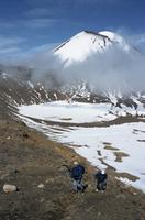 Late winter hikers on Tongariro crossing, Mount Ngauruhoe and South Crater, Taupo, Tongariro National Park, UNESCO World Heritag 20025354015| 写真素材・ストックフォト・画像・イラスト素材|アマナイメージズ