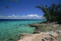 Fringing reef, Bahia de Cochinos (Bay of Pigs), Cuba, West Indies, Central America
