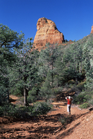 Birdwatcher on path, and red rock cliff towering above the Brins Mesa Trail. Sedona, Arizona, United States of America (U.S.A.),