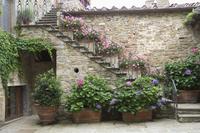 Volpaia, a hill village near Radda, Chianti, Tuscany, Italy, Europe 20025356934| 写真素材・ストックフォト・画像・イラスト素材|アマナイメージズ