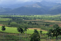 Rural landscape of fields in a green valley with palm trees, and hills beyond, San Luis, Trinidad, Cuba, West Indies, Central Am