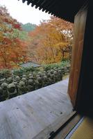 Nenbutsu dera (temple), Arashiyama, Kyoto, Japan 20025358564| 写真素材・ストックフォト・画像・イラスト素材|アマナイメージズ