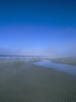 Beach and sea mist, Queen Charlotte Island, British Columbia (B.C.), Canada, North America 20025358808| 写真素材・ストックフォト・画像・イラスト素材|アマナイメージズ