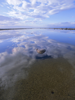 Reflection of clouds in water on the beach, Queen Charlotte Islands, British Columbia (B.C.), Canada, North America 20025358844| 写真素材・ストックフォト・画像・イラスト素材|アマナイメージズ