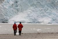 Pia Glacier, Beagle Channel, Darwin National Park, Tierra del Fuego, Patagonia, Chile, South America 20025358995| 写真素材・ストックフォト・画像・イラスト素材|アマナイメージズ